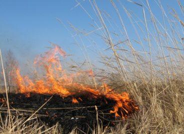 Сальчан просят не сжигать траву во избежание пожара