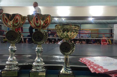 Сальский боксёр стал победителем областного первенства