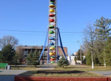 Сальчане выбрали название городского парка культуры