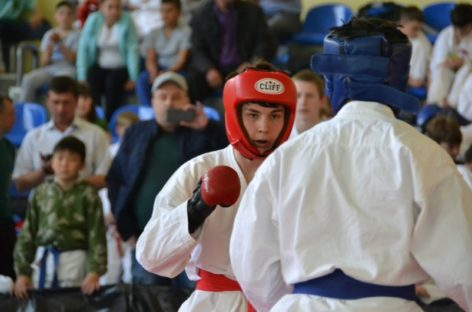 Турнир по рукопашному бою в Сальске: второй, уже традиционный