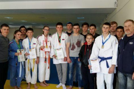 Дзюдоисты Сальского района успешно выступили на Играх Дона