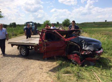 В Сальском районе в аварии погиб водитель