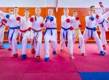 Трое сальских каратистов попали в финал Спартакиады учащихся России-2017