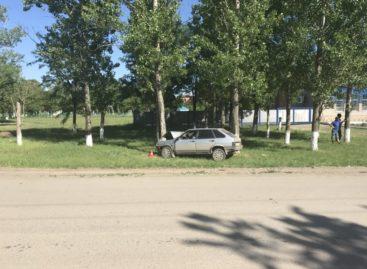 В Сальском районе пьяный водитель  на ВАЗ-21093 врезался в дерево