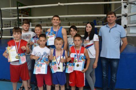 Сальские боксёры: девять наград с Кубани
