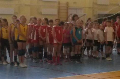 Сальские волейболистки стали вторыми в домашнем турнире