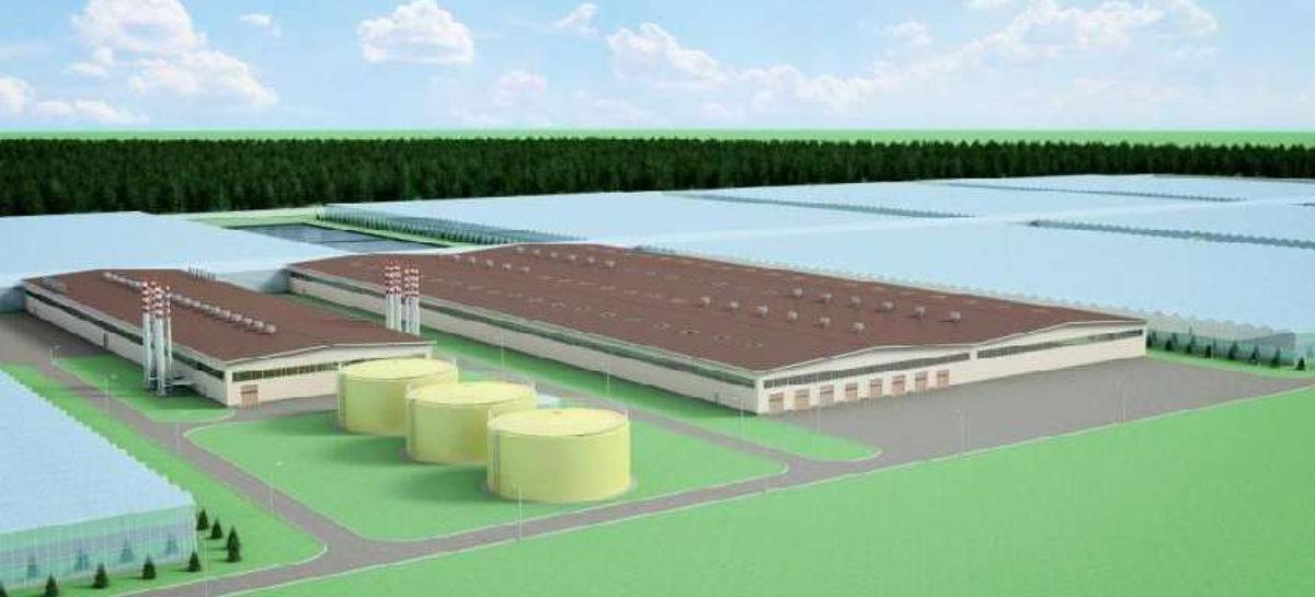 В Сальске хотят построить современный тепличный комплекс — Сальскньюс