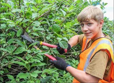 Детям до 18-ти: где найти работу сальскому подростку?
