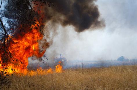 Чрезвычайная пожароопасность ожидается в Ростовской области