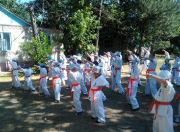 Сальские каратисты успешно прошли аттестацию на пояса