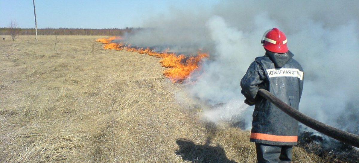 В Сальске уже несколько часов горит пустырь в районе военной части