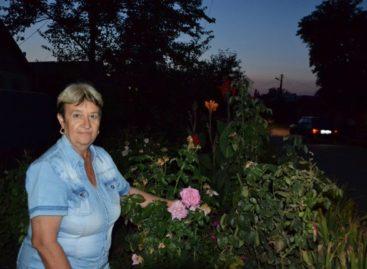 Сальчанке Лидии Ковалёвой украшать улицу клумбами помогают соседи