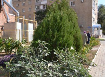 «Я люблю этот город»: на Дзержинского, 47, думают о здоровье