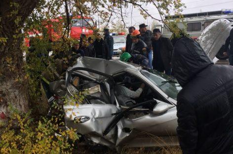 В Сальском районе в автоаварии погиб молодой мужчина