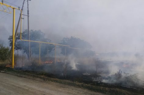 В Сальске горела сухая трава на пустыре недалеко от Магистральной