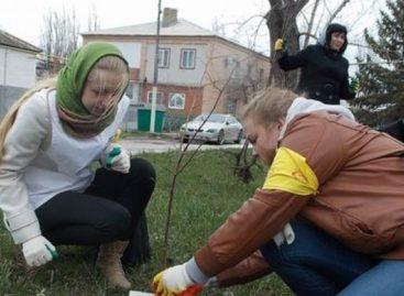 День древонасаждения пройдет в Сальском районе 21 октября