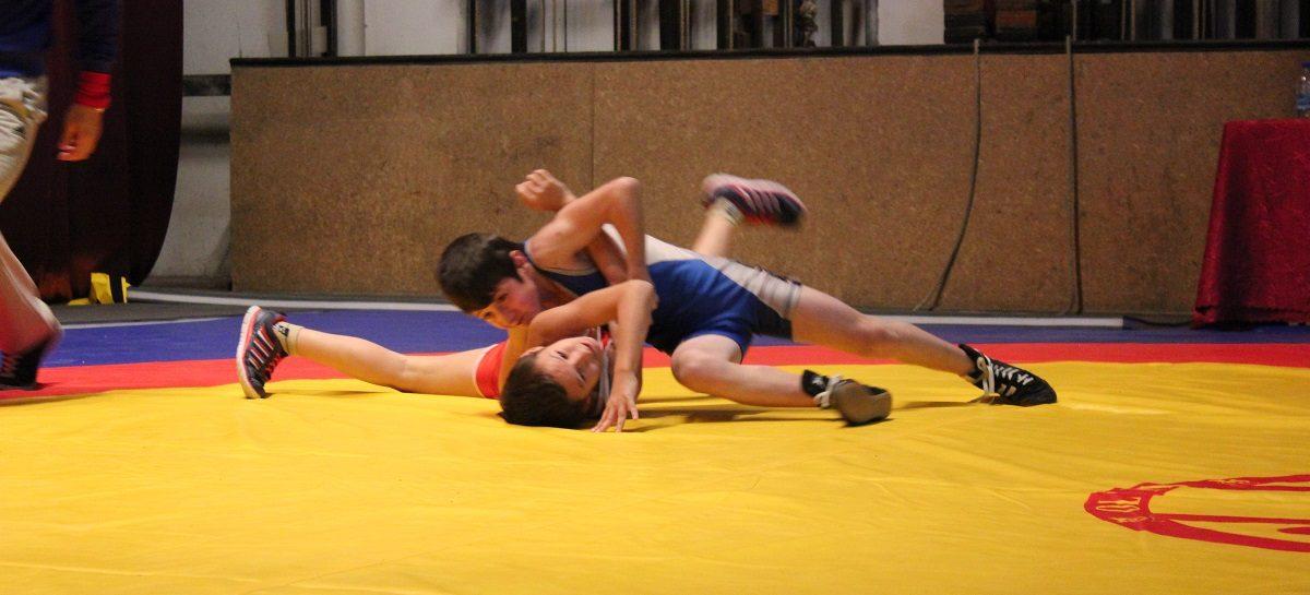 В Гиганте пройдет областной турнир по греко-римской борьбе