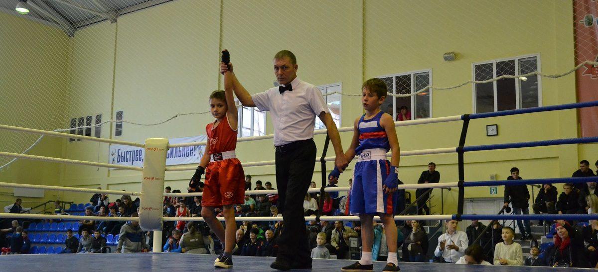 Боксеры нескольких регионов сразились на сальском ринге