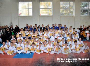 Каратисты Сальского района поедут в Зверево