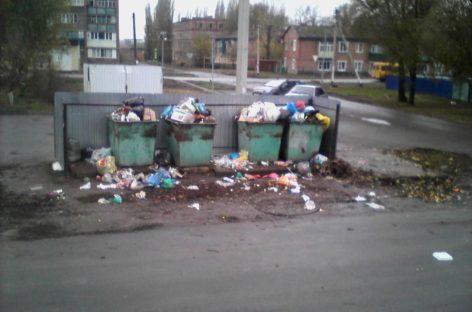 Сальчанин предлагает установить контейнер «Мусконт»на улице Островского