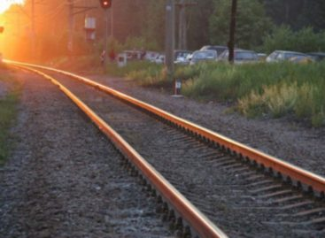 В районе путепровода пожилая сальчанка бросилась под поезд