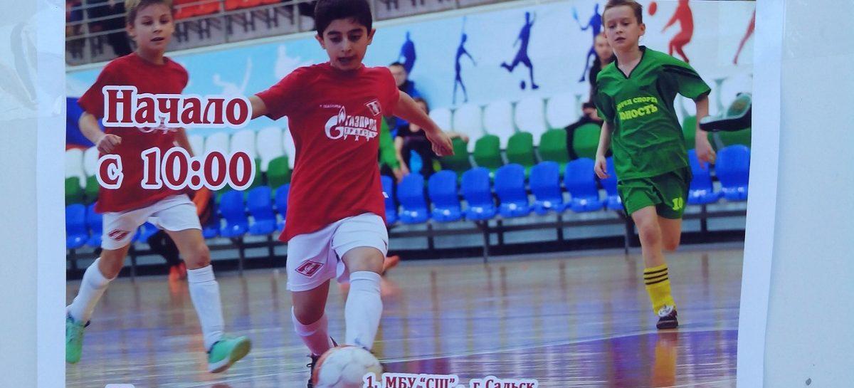 Сальчане сразятся с кубанцами в мини-футболе 19 ноября в спорткомплексе
