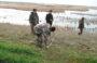 Проверка прибрежных зон выявила нарушения водоохранного законодательства