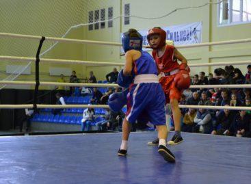 Первенство ЮФО по боксу стартует в Сальске 16 января