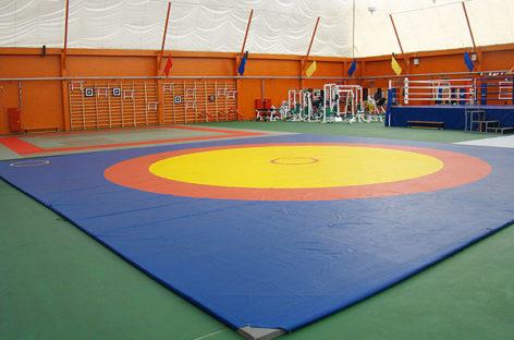 Сальские дзюдоисты завоевали медали областного первенства