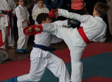 В Сальске стартовал новый сезон соревнований по каратэ «Ступени мастерства»