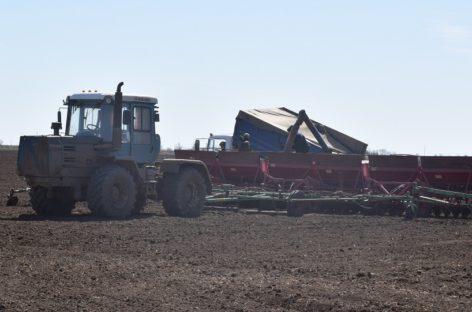 Весенние полевые работы в Сальском районе набирают темп