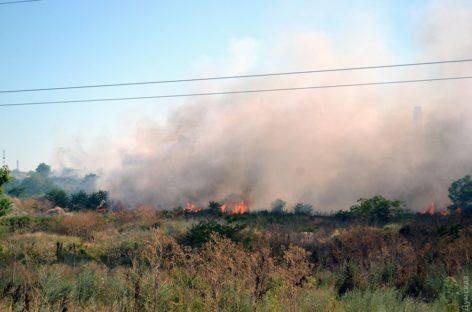 Два возгорания мусора на пустырях произошли в Сальске
