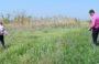 Рейд по выявлению нарушений водоохранного кодекса России прошёл в Сальском районе