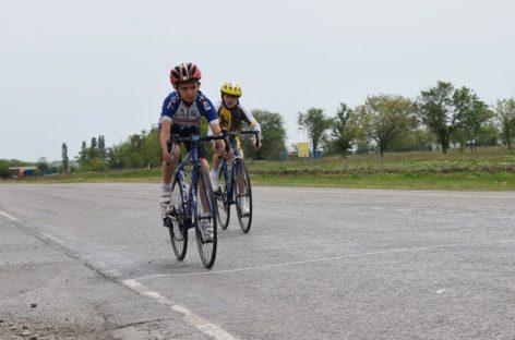 Областное первенство по велоспорту на шоссе: кубок вновь остался в Сальске