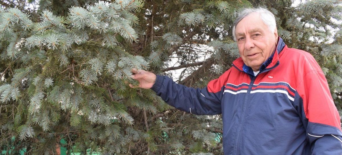 Бригадир из династии хлебопашцев: Николаем Светличным гордится родное село