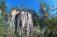 Вместо спиленных деревьев в парке в районе Ново-Сальск высадят новые