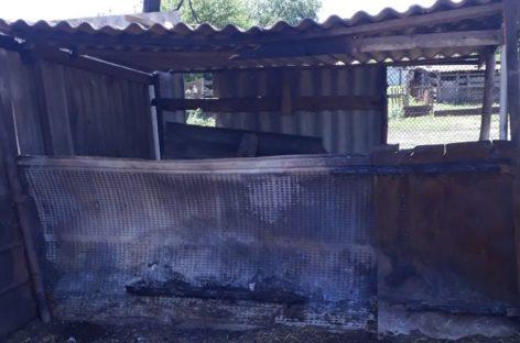 В Романовке из-за детской шалости с огнём сгорело 20 тонн сена