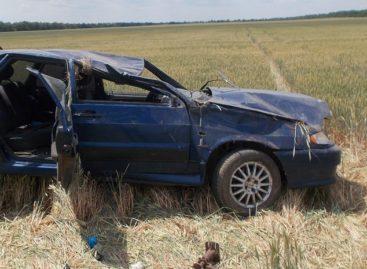 В Сальском районе в аварии погибла женщина