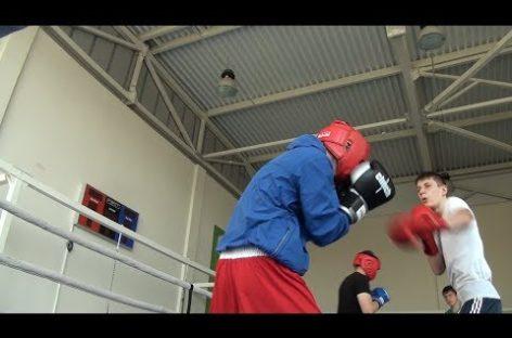 Сальские боксеры готовятся к межрегиональному турниру