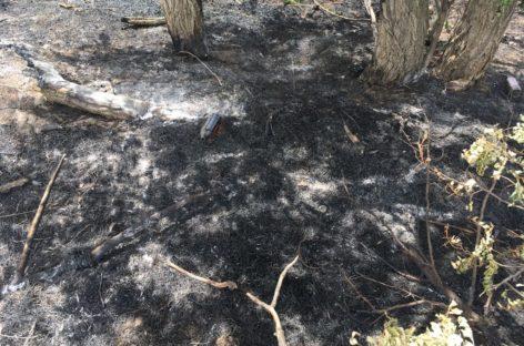 Возгорание на окраине Сальска тушили три пожарных расчёта