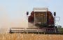 Почти 320 тысяч тонн зерна намолочено хозяйствами всех форм собственности Сальского района