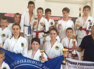 Рукопашный бой: сальский «Боец» завоевал награды на родине Шолохова