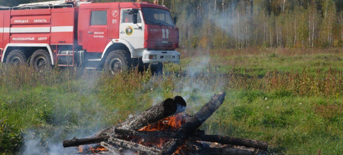 В Сальском районе ограничено пребывание граждан в лесах