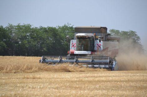Хозяйства Сальского района завершают уборку ранних зерновых