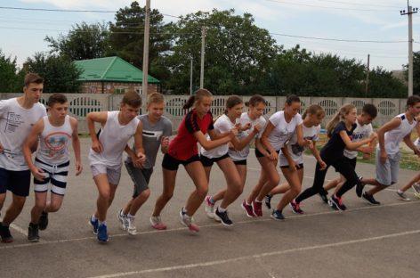 Сальская молодежь примет участие в областном фестивале ГТО