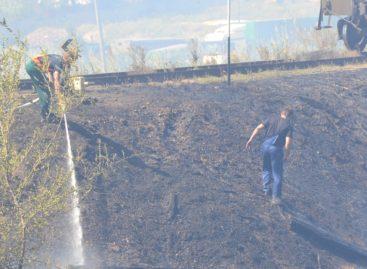 Ново-Сальск задыхается от дыма:  горит сухая трава