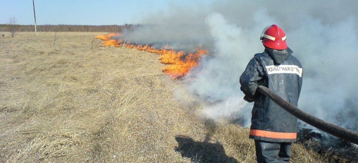 В Сальском районе за три дня сухую траву и мусор тушили 15 раз