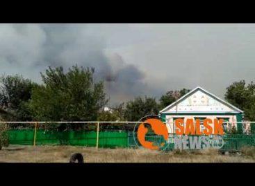 Пожар на улице Трудовой, граничащей с сальским лесхозом, серьёзно напугал жителей