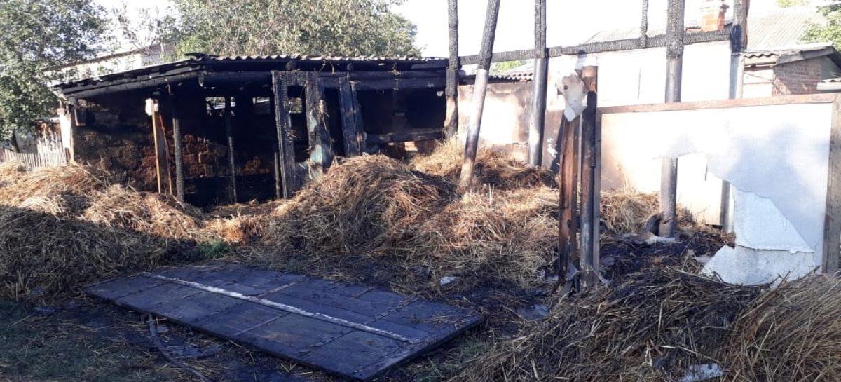 В Сальском районе тушили пожары девять раз за два дня