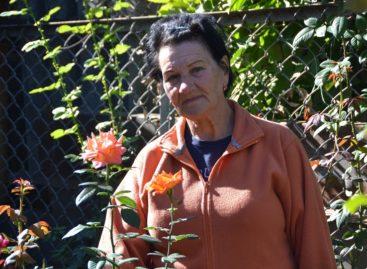 Семья Зинченко мечтает о жар-птице в своём дворе